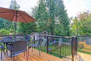 Photo 21: 21498 Berry Avenue in Maple Ridge: Home for sale : MLS®# R2109715