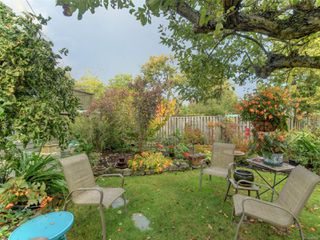 Photo 19: 2517 Graham St in : Vi Hillside House for sale (Victoria)  : MLS®# 858230