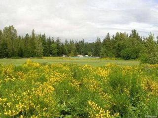 Photo 5: 2084 Saratoga Rd in : CV Merville Black Creek Mixed Use for sale (Comox Valley)  : MLS®# 861904