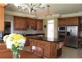 Photo 4: 9780 GILBERT Road in Richmond: Broadmoor House for sale : MLS®# V868910