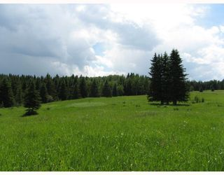 Photo 8: Water Valley Springs Estates: Rural Mountain View County Land for sale : MLS®# C4259086