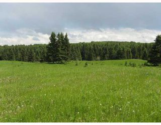 Photo 6: Water Valley Springs Estates: Rural Mountain View County Land for sale : MLS®# C4259086