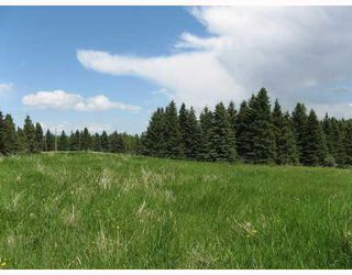 Photo 9: Water Valley Springs Estates: Rural Mountain View County Land for sale : MLS®# C4259086