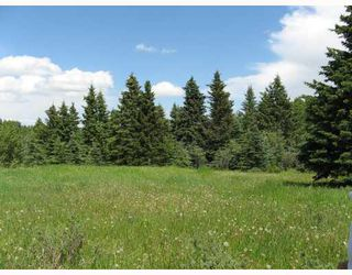 Photo 10: Water Valley Springs Estates: Rural Mountain View County Land for sale : MLS®# C4259086