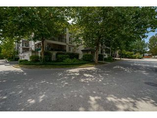 Photo 18: 214 19528 FRASER HIGHWAY in Surrey: Cloverdale BC Condo for sale (Cloverdale)  : MLS®# R2397037