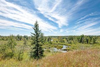 Photo 49: 4 LAKE PLACID Rise SE in Calgary: Lake Bonavista Detached for sale : MLS®# A1029014