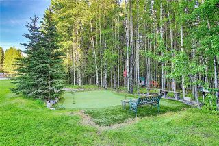 Photo 45: 9 MOUNTAIN LION Place: Bragg Creek Detached for sale : MLS®# A1032262