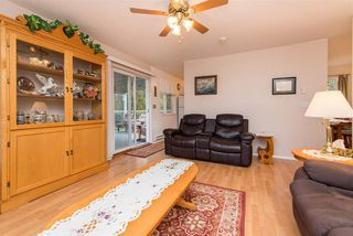Photo 32: 42717 WALNUT Avenue: Yarrow House for sale : MLS®# R2512412