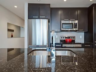 Photo 9: 1704 225 11 Avenue SE in Calgary: Beltline Apartment for sale : MLS®# A1055613