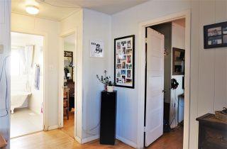 Photo 11: 9841 77 Avenue in Edmonton: Zone 17 House for sale : MLS®# E4224426