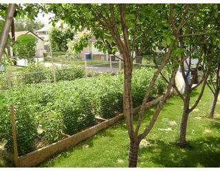 Photo 8: 318 MOORGATE Street in WINNIPEG: St James Residential for sale (West Winnipeg)  : MLS®# 2812483