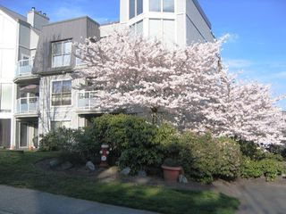 """Photo 1: 312 68 RICHMOND Street in New_Westminster: Fraserview NW Condo for sale in """"GATEHOUSE PLACE"""" (New Westminster)  : MLS®# V751739"""