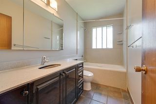 Photo 14: 11132 48 Avenue in Edmonton: Zone 15 House for sale : MLS®# E4200680