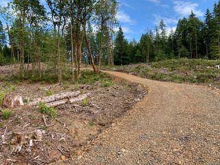 Photo 5: LT 7 Blower Rd in PORT ALBERNI: PA Sproat Lake Land for sale (Port Alberni)  : MLS®# 843429