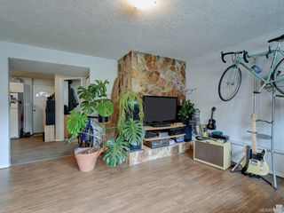 Photo 15: 1316 Lang St in Victoria: Vi Mayfair House for sale : MLS®# 842998