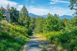 Photo 34: 45467 ARIEL Place: Cultus Lake House for sale : MLS®# R2481002