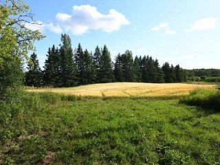 Photo 14: 294153 8th Line in Amaranth: Rural Amaranth Property for sale : MLS®# X4544385