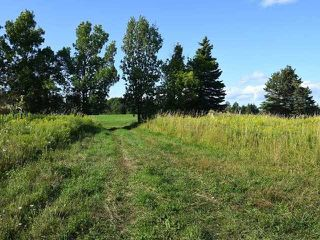 Photo 15: 294153 8th Line in Amaranth: Rural Amaranth Property for sale : MLS®# X4544385