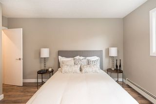 Photo 37: 14516 87 Avenue NW in Edmonton: Zone 10 House for sale : MLS®# E4186905