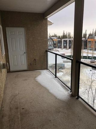 Photo 11: #403 1320 RUTHERFORD RD SW in Edmonton: Zone 55 Condo for sale : MLS®# E4186994