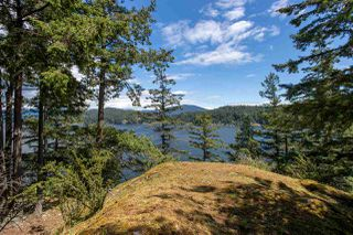 Photo 39: 308 SHOAL LKOUT Road in Gibsons: Gibsons & Area House for sale (Sunshine Coast)  : MLS®# R2471012
