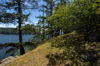 Photo 37: 308 SHOAL LKOUT Road in Gibsons: Gibsons & Area House for sale (Sunshine Coast)  : MLS®# R2471012