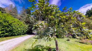 Photo 2: 1225 - 1227 ROBERTS CREEK Road: Roberts Creek House for sale (Sunshine Coast)  : MLS®# R2476356