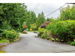 Photo 4: 19746 49 Avenue in Langley: Langley City House for sale : MLS®# R2493431