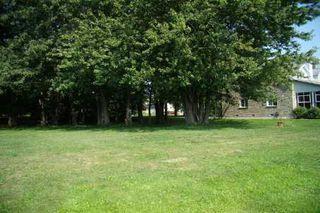 Photo 5: 53 Ridge Avenue in Ramara: Freehold for sale (X17: ANTEN MILLS)  : MLS®# X1951846