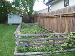 Photo 3: 119 ST MICHAEL Road in WINNIPEG: St Vital Residential for sale (South East Winnipeg)  : MLS®# 1018560