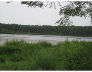 """Photo 5: # LOT 4 HOODOO LAKE BB in Prince_George: Nukko Lake Land for sale in """"NUKKO LAKE"""" (PG Rural North (Zone 76))  : MLS®# N184584"""