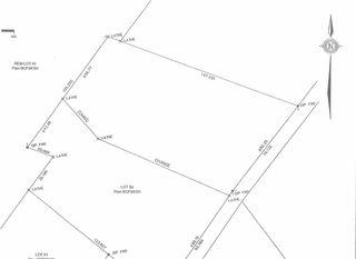 Photo 14: Lot 50 TSAWWASSEN Drive in Tsawwassen: Cliff Drive Land Commercial for sale : MLS®# C8034130