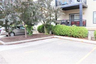 Photo 28: 204 9927 79 Avenue NW in Edmonton: Zone 17 Condo for sale : MLS®# E4166853