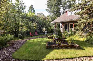 Photo 46: A19 Bernice Avenue: Rural Leduc County House for sale : MLS®# E4182563
