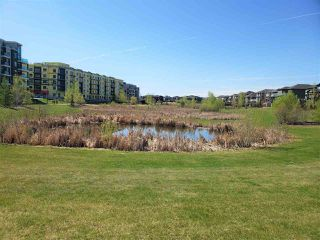 Photo 8: 218 1306c Windermere Way in Edmonton: Zone 56 Condo for sale : MLS®# E4191410