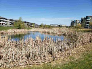 Photo 10: 218 1306c Windermere Way in Edmonton: Zone 56 Condo for sale : MLS®# E4191410