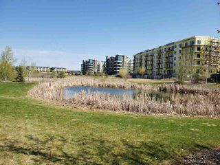 Photo 6: 218 1306c Windermere Way in Edmonton: Zone 56 Condo for sale : MLS®# E4191410
