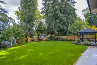 Photo 24: 10990 ORIOLE Drive in Surrey: Bolivar Heights House for sale (North Surrey)  : MLS®# R2489977