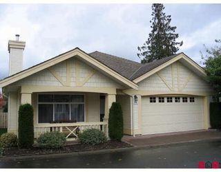 Photo 1: 15 8555 209TH Street: Walnut Grove Home for sale ()  : MLS®# F2727663