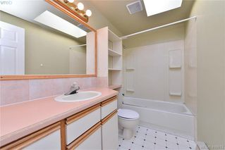 Photo 20: 3675 McIvor Ave in VICTORIA: SE Cedar Hill House for sale (Saanich East)  : MLS®# 827115