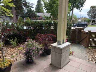 "Photo 6: 113 5160 DAVIS BAY Road in Sechelt: Sechelt District Condo for sale in ""THE WEST"" (Sunshine Coast)  : MLS®# R2421160"