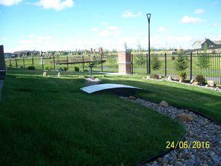 Photo 33: 8504 218 Street in Edmonton: Zone 58 House for sale : MLS®# E4185110