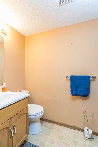Photo 19: 245 Kildonan Meadow Drive in Winnipeg: Kildonan Meadows Residential for sale (3K)  : MLS®# 202009731