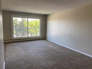 Photo 18: 304 18204 93 Avenue in Edmonton: Zone 20 Condo for sale : MLS®# E4209599
