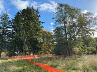 Photo 7: Lt15 1170 Lazo Rd in : CV Comox (Town of) Land for sale (Comox Valley)  : MLS®# 856221