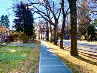 Photo 3: 10931 81 Street in Edmonton: Zone 09 House for sale : MLS®# E4220831