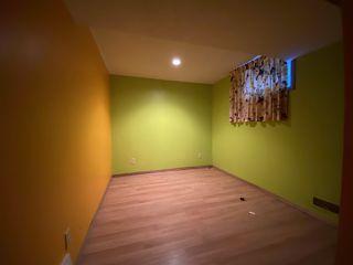 Photo 26: 10931 81 Street in Edmonton: Zone 09 House for sale : MLS®# E4220831