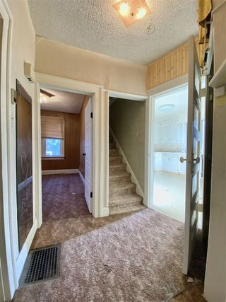 Photo 17: 10931 81 Street in Edmonton: Zone 09 House for sale : MLS®# E4220831