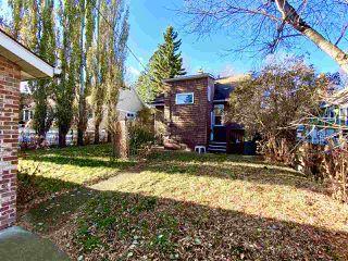Photo 6: 10931 81 Street in Edmonton: Zone 09 House for sale : MLS®# E4220831