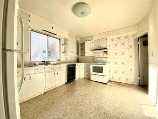 Photo 13: 10931 81 Street in Edmonton: Zone 09 House for sale : MLS®# E4220831